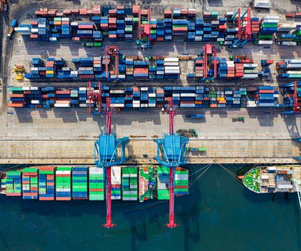 Khapra Beetle Measures on Sea Freight Imports